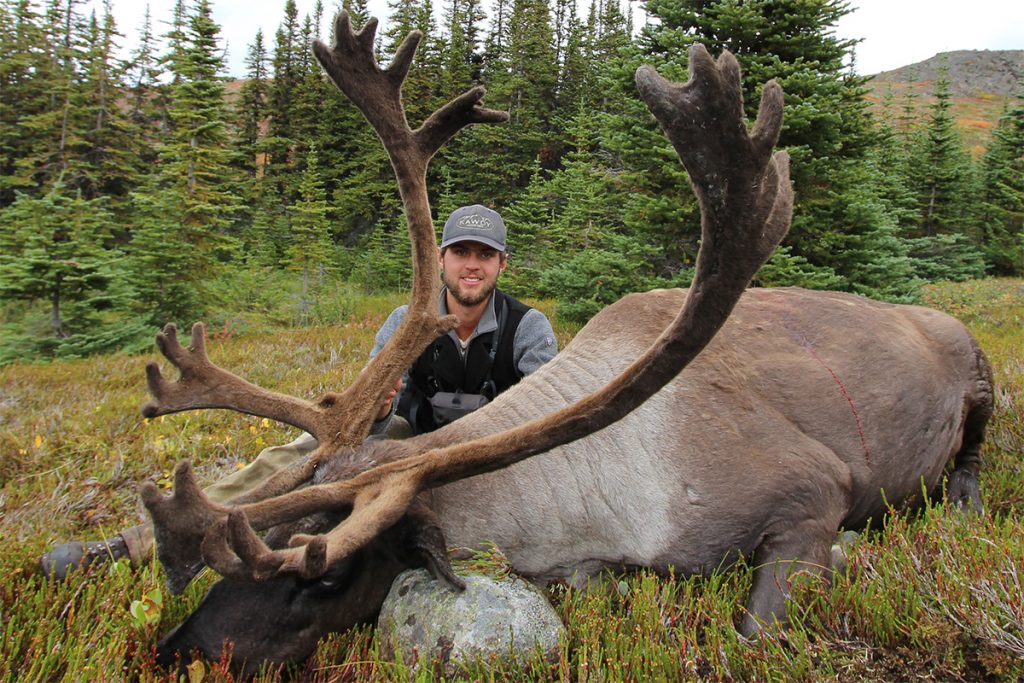 Mountain Caribou Hunt