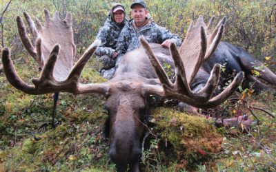 4 Reasons Not to Overlook an Early Season Moose Hunt