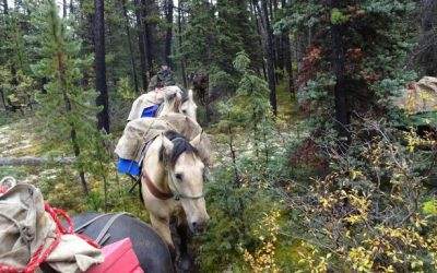 Packing Light for High Country British Columbia Hunts