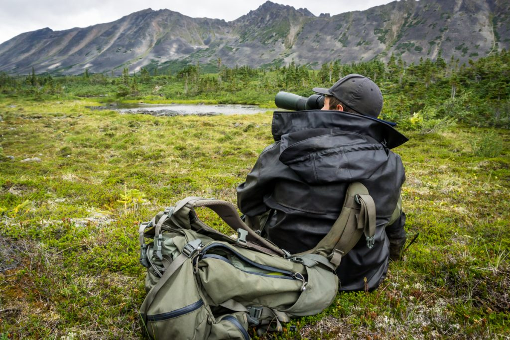 Glassing for Mountain Goats in British Columbia