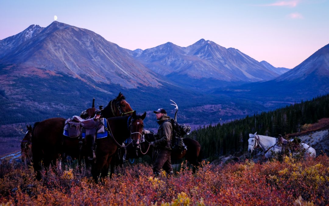 3 Reasons Why You Should be Hunting Northern B.C.