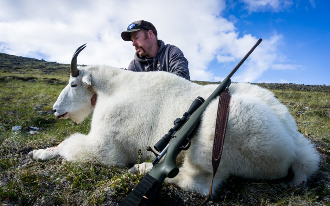 The Adventure and the Challenge of a B.C. Mountain Goat Hunt