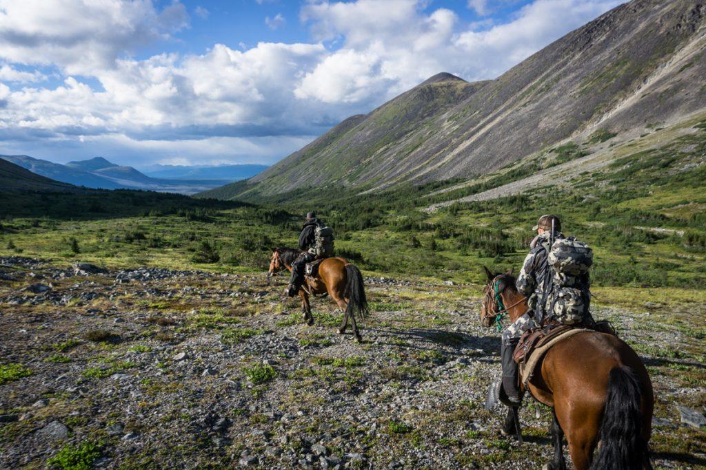 Horseback Moose Hunt
