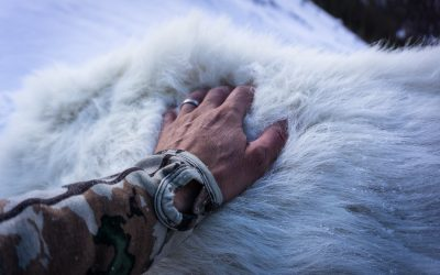 Blending In: Camoflage for A Northern British Columbia Hunt