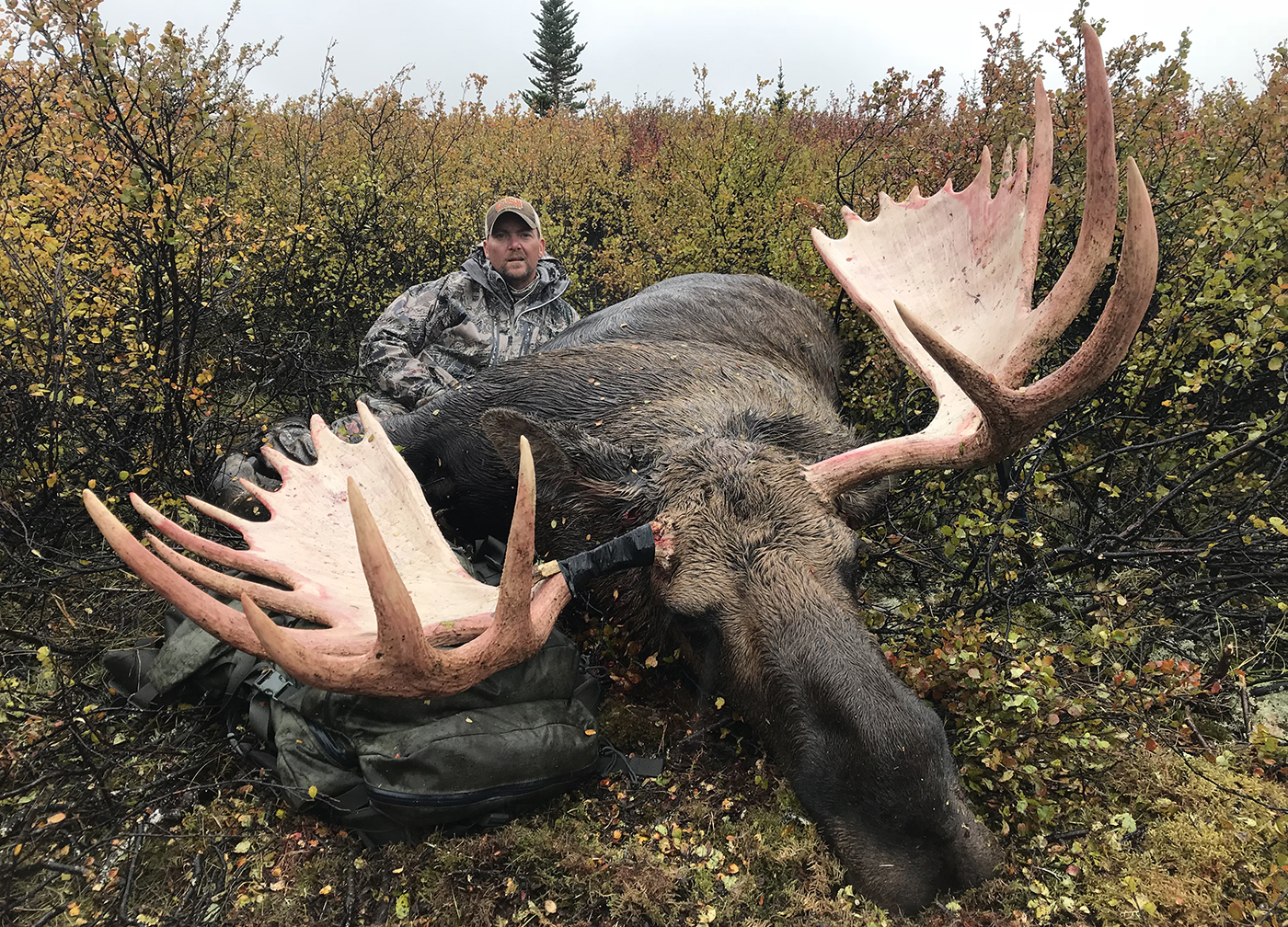 When to Hunt Moose: Early Season or the Rut