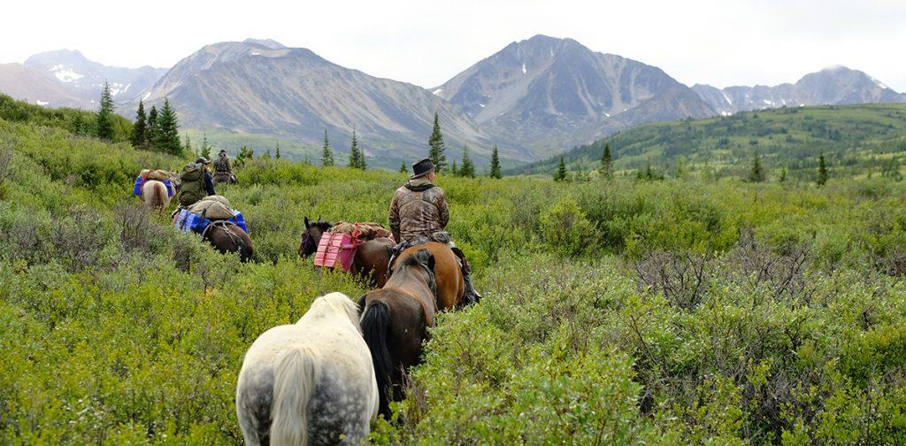 Horseback Hunting in BC