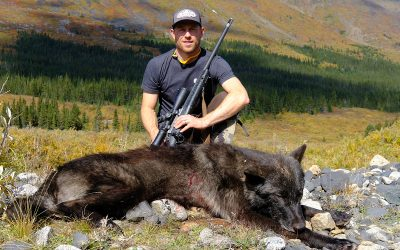 Extra Credit Opportunities: Wolf, Wolverine & Black Bear