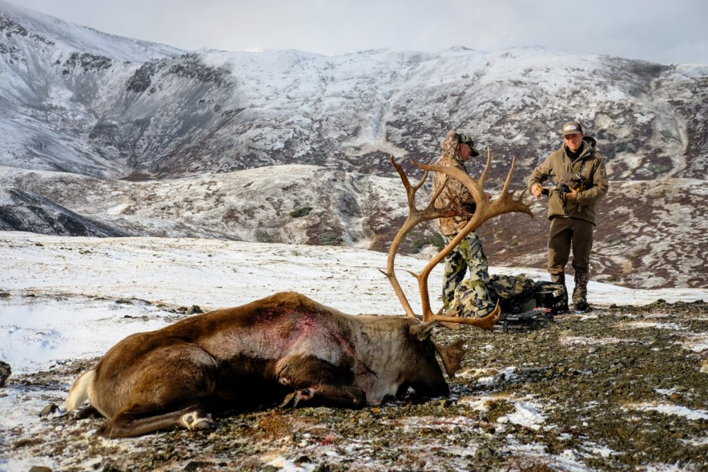 BC Mountain Caribou Combo Hunt