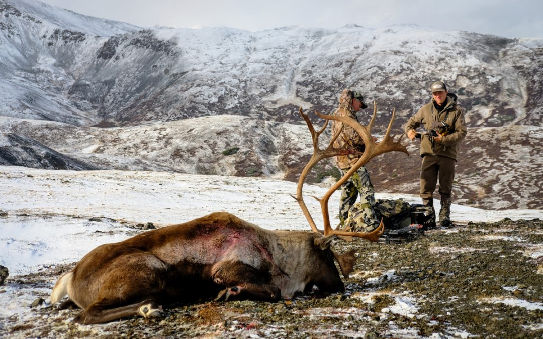 Mountain Caribou & Moose: The Classic BC Combo Hunt