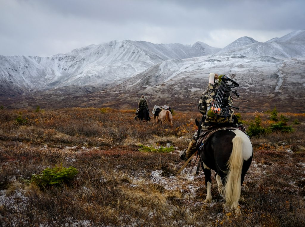 Guided Horseback Hunt