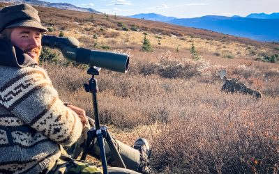 Calling and Locating Moose During the Rut