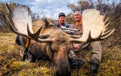 The Best Time to Hunt Moose: Early Season or the Rut?
