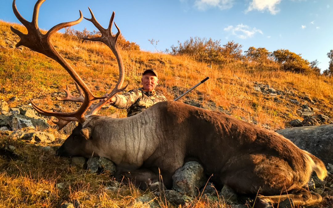 Hunting a Mountain Caribou Stronghold