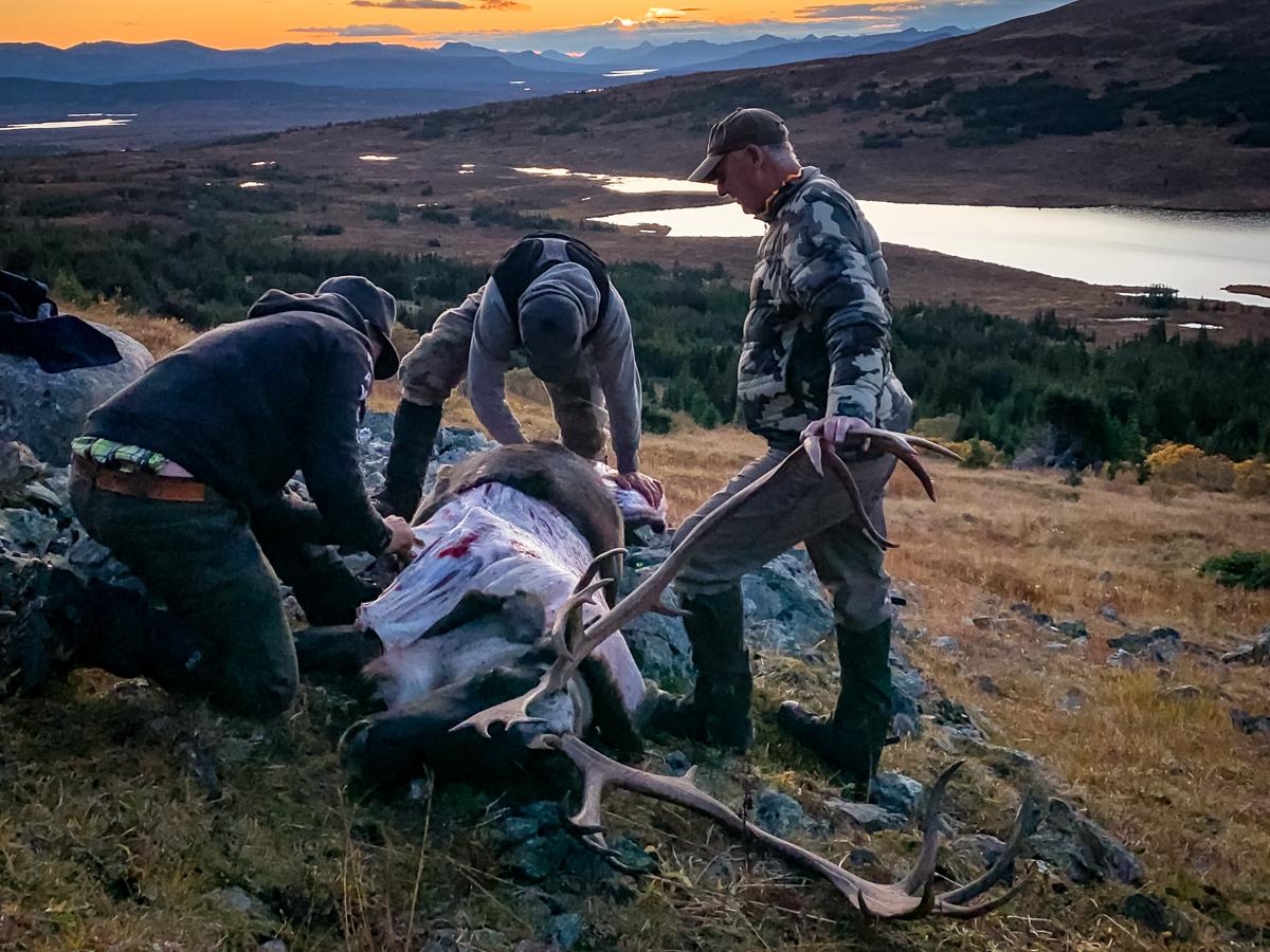 A Mountain Hunt in British Columbia